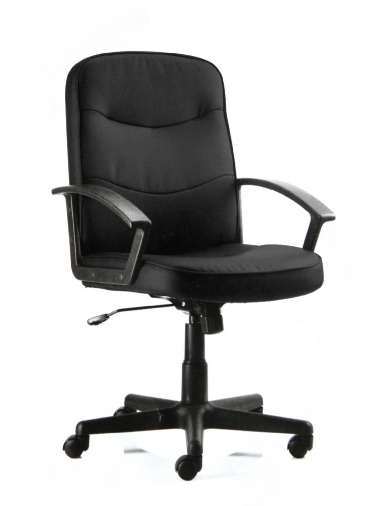 Harley Office High Back Task Chair Simple Clean Lines Fixed Loop Arms Various Colour Choices
